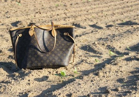 Louis Vuitton bag and future sunflowers.