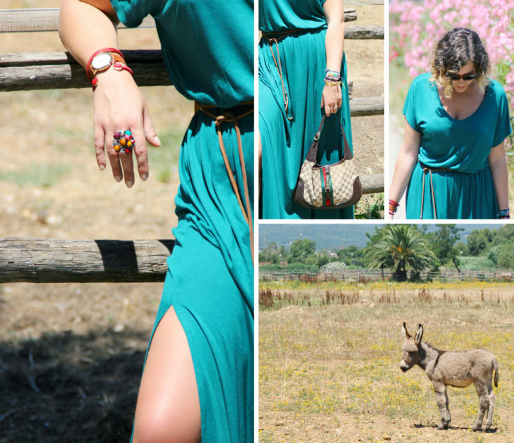 Casual long dress outfitamong the Amiata donkeys.
