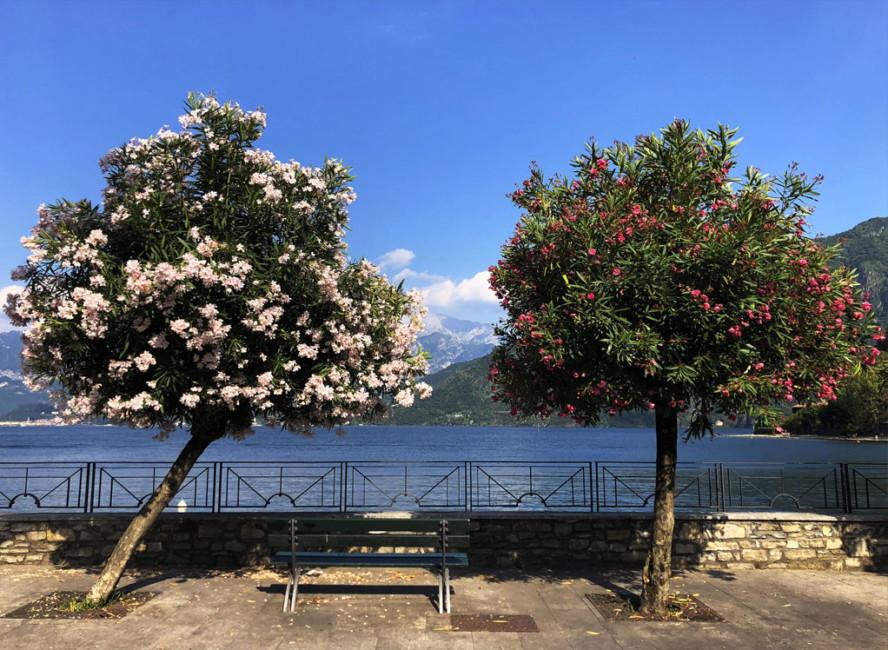 Lungolago Lenno Lago di Como - Along Lake Lenno Lake Como.