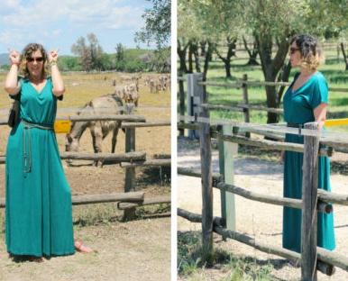 Visita agli asini amiatini - Visit to the Amiata donkeys.