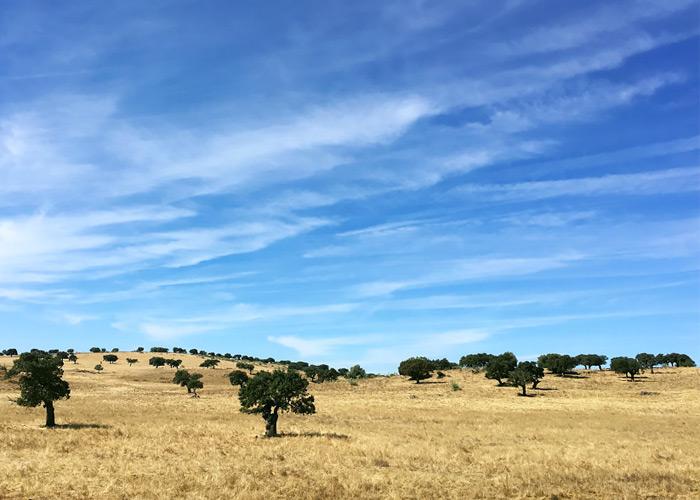Colline della regione Alentejo in Portogallo.