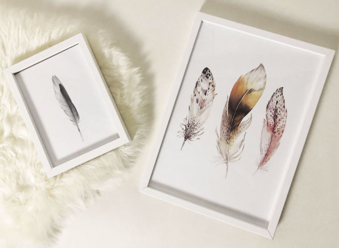 Wall prints with feathers.